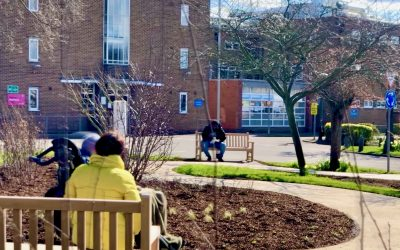⭐️The HarefieldHealing Garden welcomes its first visitors⭐️